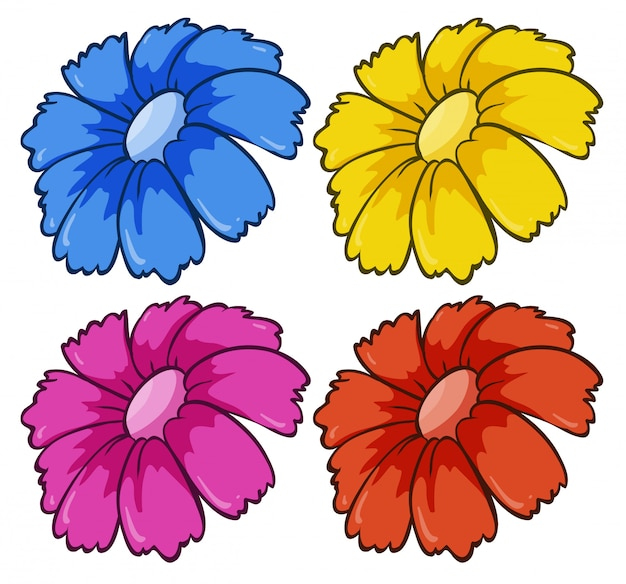 Quatre fleurs de couleurs différentes