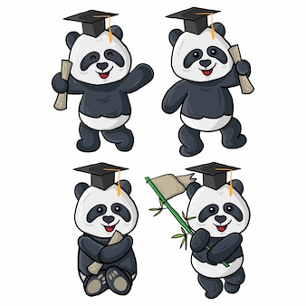 Quatre illustrations de graduation panda