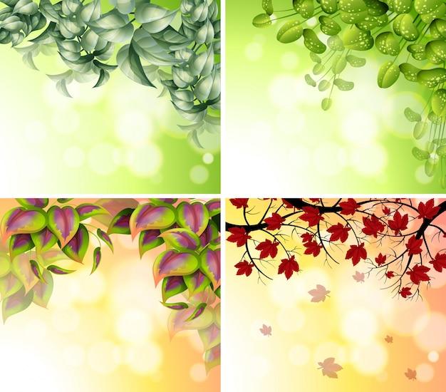 Quatre modèles de bordure