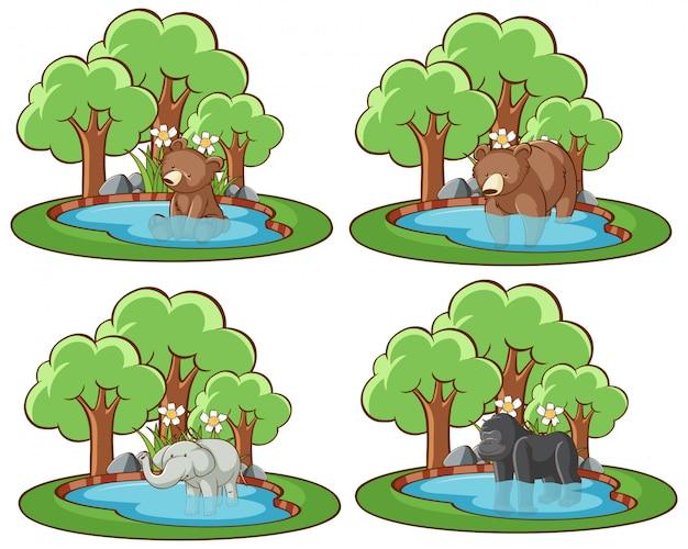 Quatre scènes avec des ours et des éléphants