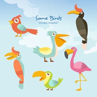 Quelques oiseaux wilson