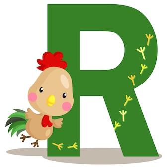 R pour le coq