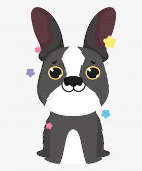 Race de chien mignon bouledogue français animal de bande dessinée domestique, illustration d'animaux de compagnie