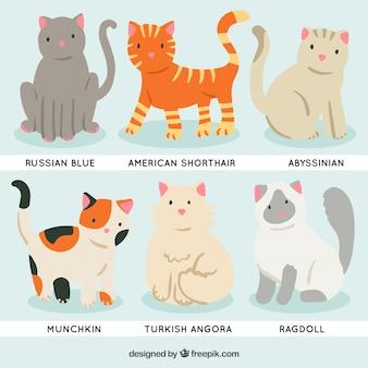 Races de chat de bande dessinée