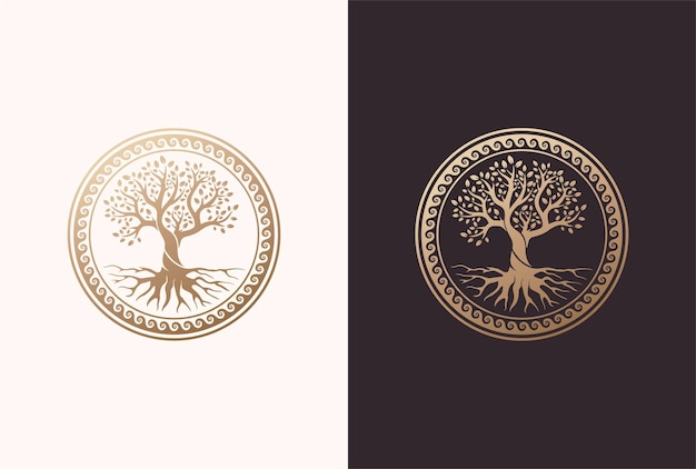 Racine ou arbre, symbole de vecteur d'arbre de vie avec une forme de cercle.
