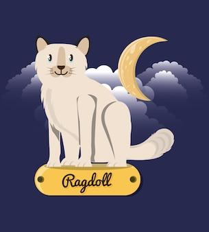 Ragdoll de chat sous la lumière de la lune