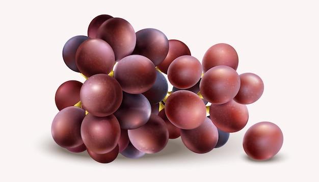 Raisins réalistes isolés sur fond blanc