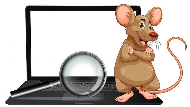 Un rat sur un ordinateur portable et une loupe
