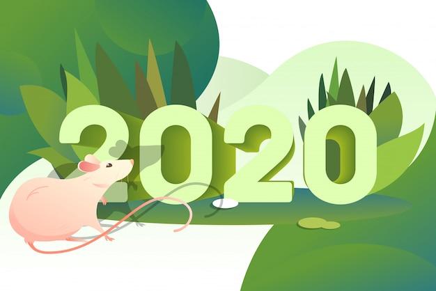 Rat rose et numéros 2020