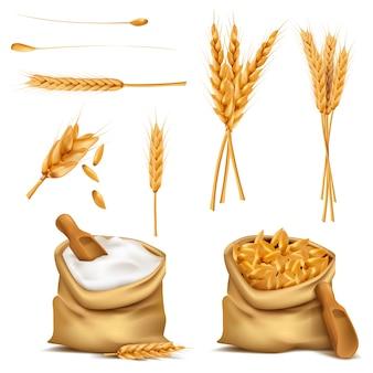 Réaliste, ensemble, céréales, 3d, icône