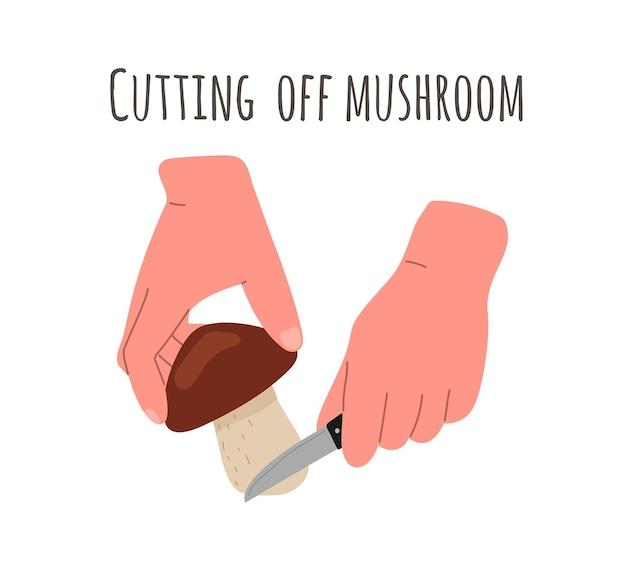 Récolte de champignons, cueillette. cueillette de champignons, méthode de coupe des champignons par la racine avec un couteau. illustration vectorielle à plat.
