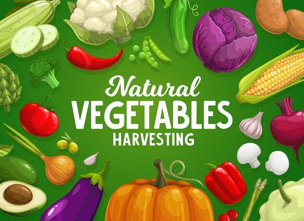 Récolte de la ferme de légumes.