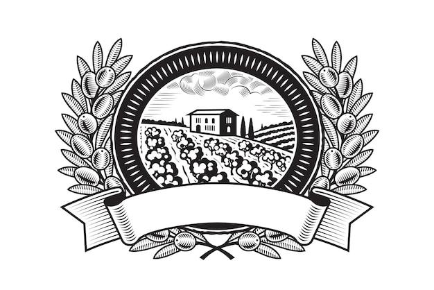 Récolte des olives label noir et blanc