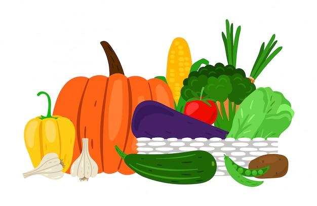 Récolter les légumes du jardin sur blanc