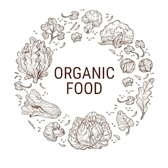 Régime alimentaire sain, nutrition et alimentation saine. feuilles de choux et salades, produits bio et ingrédients écologiques pour une détox et une alimentation équilibrée. contour de croquis monochrome, vecteur dans un style plat