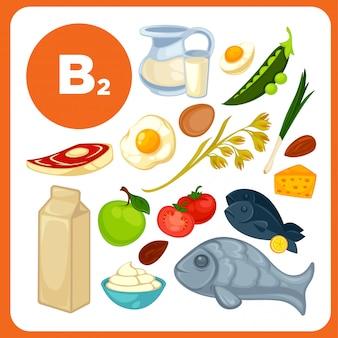 Réglez les aliments avec de la vitamine b2.