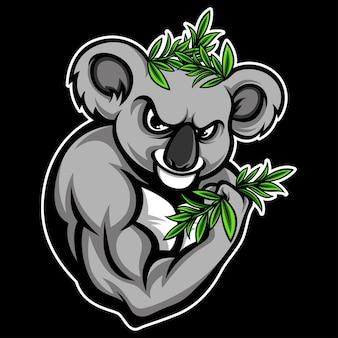 Remise en forme koala