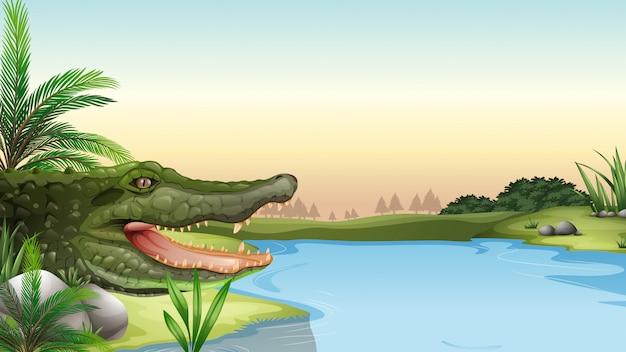 Un reptile à la rivière