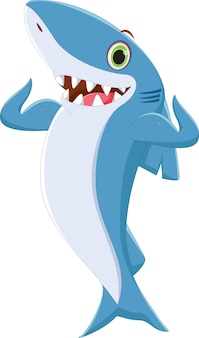 Requin drôle posant