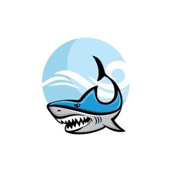Requin en mer