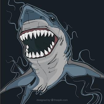 Requins dangereux