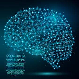Résumé du cerveau humain polygonal