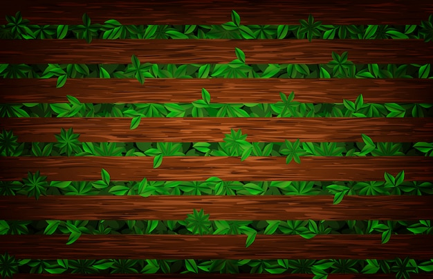 Résumé historique de planche de bois et plante de feuilles naturelles