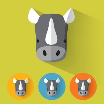 Rhino conçoit collection