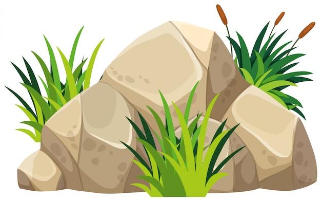 Rocher brun avec de l'herbe verte sur le dessus