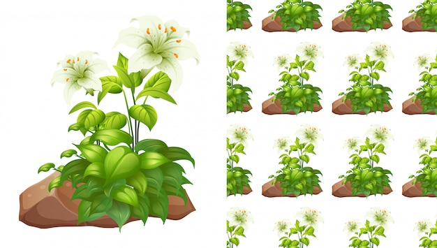 Roches et fleurs de lis blanc sans couture
