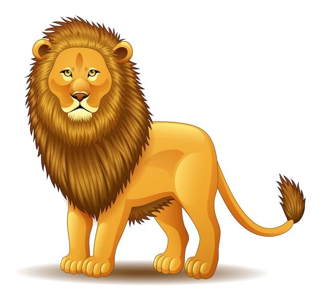 Roi lion dessin animé isolé sur fond blanc