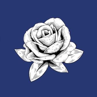 Rose dessin icône de vecteur nature fleur sur fond bleu