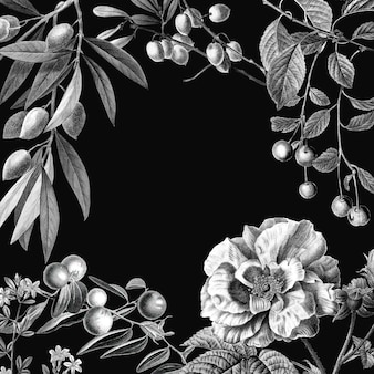 Rose frame vector illustration botanique vintage et fruits sur fond noir