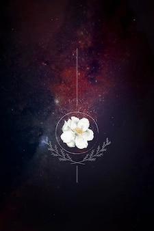 Rose musquée sur fond de galaxie