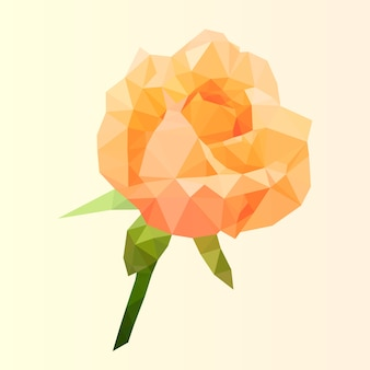 Rose orange polygonale