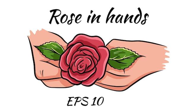 Rose rouge dans les mains des femmes. romantique. illustration vectorielle. dessin isolé sur fond blanc.