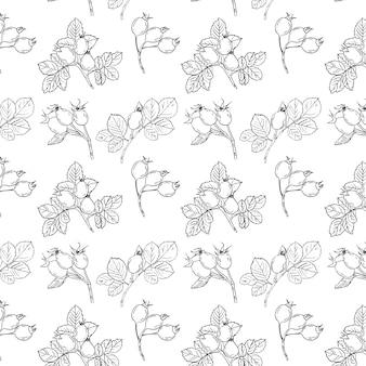 Rose seamless pattern, lineart