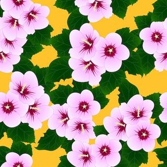 Rose de sharon sur fond jaune