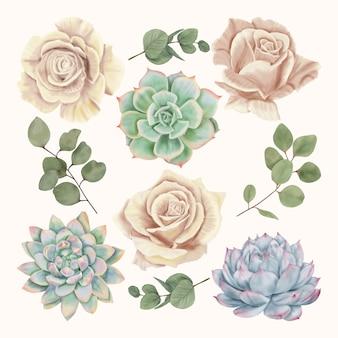 Roses beiges avec plantes succulentes et feuilles d'eucalyptus