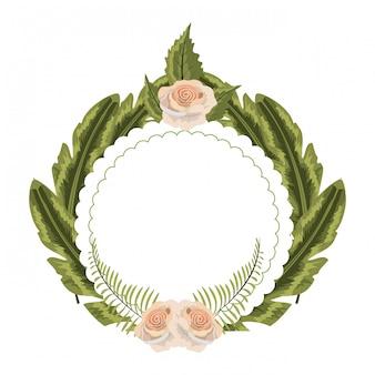 Roses exotiques mignonnes avec des feuilles et des branches