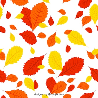 Rouge, orange et les feuilles jaunes patern