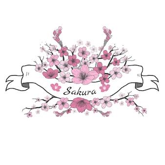 Ruban de fleurs de sakura. dessin et croquis sur fond blanc.
