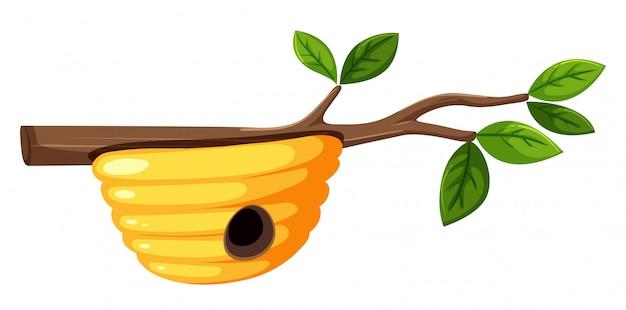 Une ruche sur la branche d'arbre