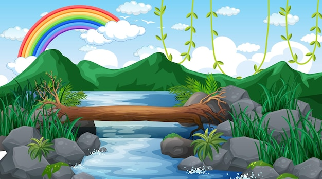 Ruisseau qui traverse la forêt avec fond de montagne et arc-en-ciel dans le ciel