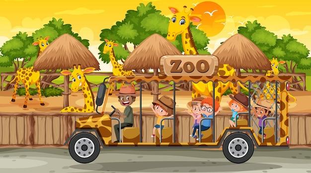 Safari au coucher du soleil avec de nombreux enfants regardant un groupe de girafes