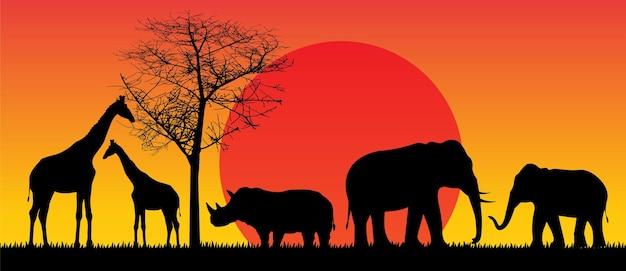 Safari faune afrique coucher de soleil animaux vecteur isolé
