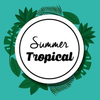 Saison tropicale d'été