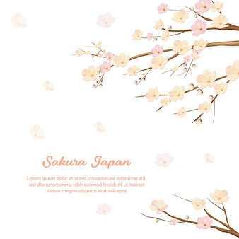 Sakura flower blossom invitation background