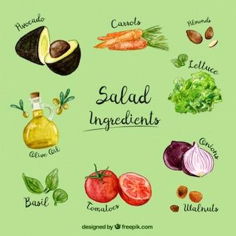 Salade ingrédients aquarelle paquet