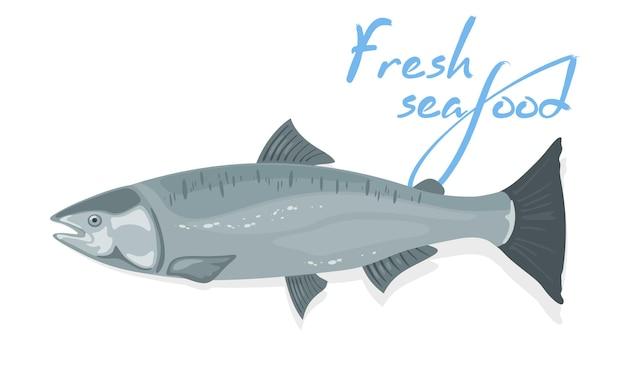 Saumon de l'atlantique au corps fusiforme et aux reflets bleu argenté.